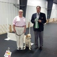 Betsy Kapp : Obedience and Rally Instructor