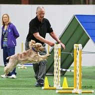 Chuck Pilny : Agility Instructor