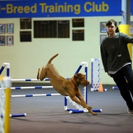 Jean Bonness : Agility Instructor